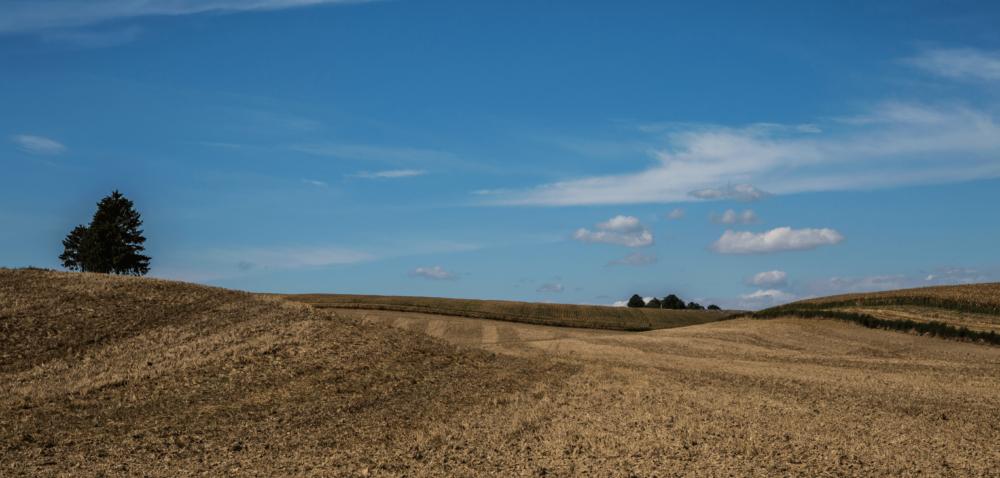 Zmiany wustawie oustroju rolnym: niezbędne dla rolników