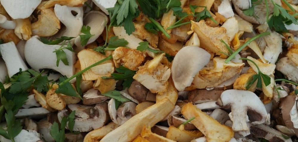 Podziel się sposobami na grzyby