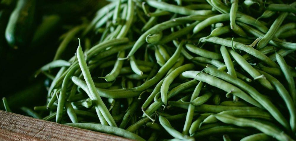 Rośliny strączkowe iich wartości odżywcze