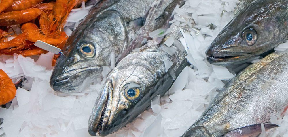 Odpowiednio oznakowane produkty rybne
