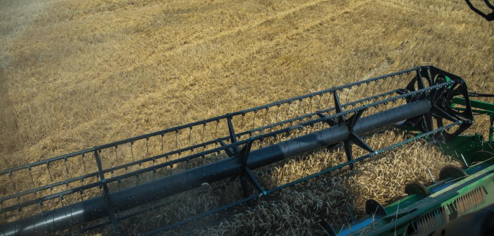 Powstał zespół do monitorowania rolnictwa woj. lubuskiego