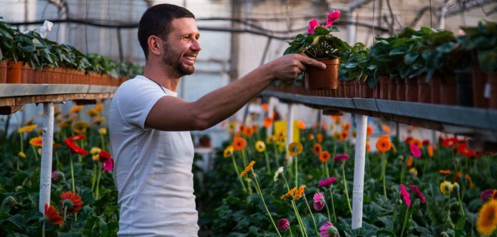 Kieleckie targi zapraszają ogrodników