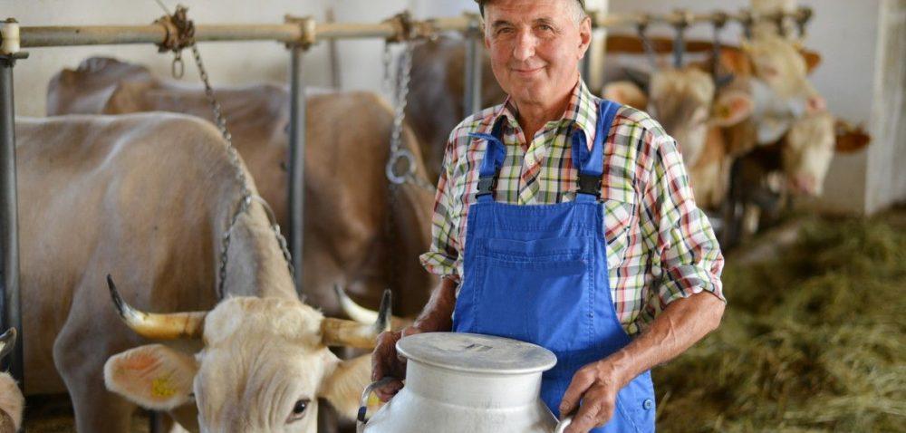 Rusza kolejny nabór wniosków orozłożenie na raty kar za nadprodukcję mleka