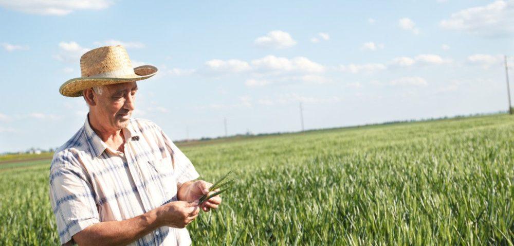 Komisja AGRI oinnowacyjnym rolnictwie
