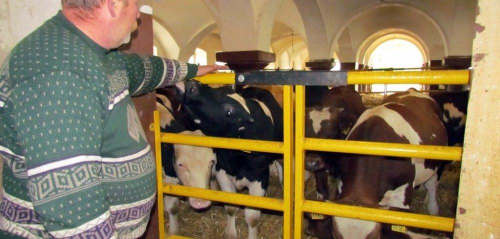 660 mln zł kary za przekroczenie kwoty mlecznej