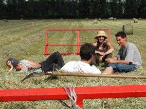 Zbyt ostre kryteria dla młodego rolnika? / punkty