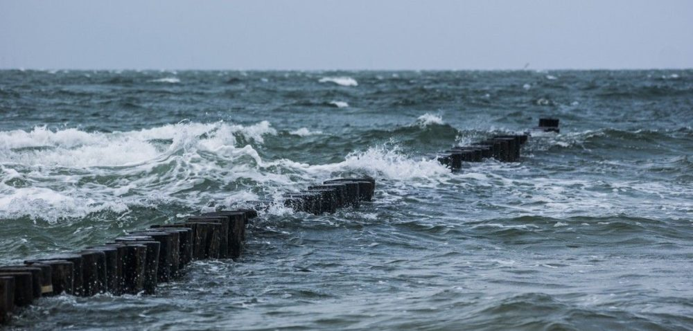 Są już wyniki konkursu Rolnik Roku Regionu Morza Bałtyckiego