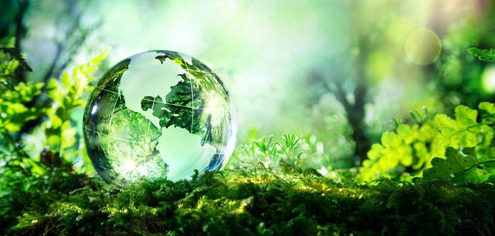 Pomoc dla środowiska naturalnego