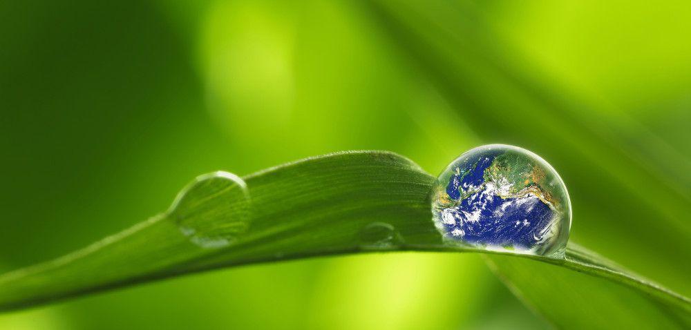 Konferencja: ekonomia versus środowisko