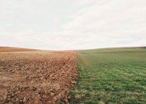 farmland-801817_640 ustawa oziemi