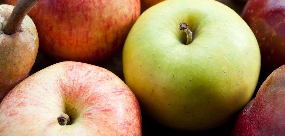 Rynek Bronisze. Ceny owoców