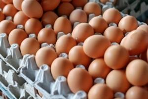 Ceny jaj wPolsce spadają! Koniec dobrej koniunktury?
