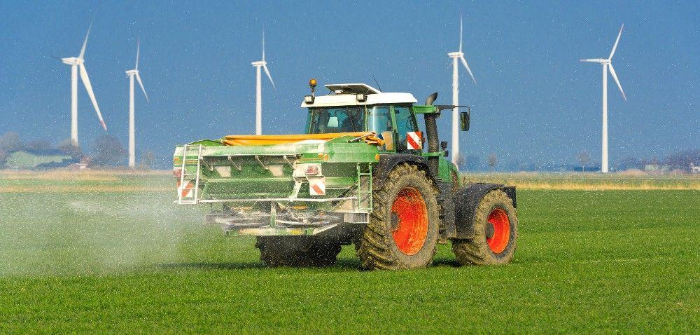 Efektywne nawożenie rzepaku jesienią: jak to zrobić skutecznie iekonomicznie?