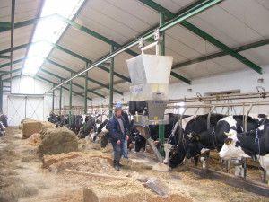 tecchnologia mleka