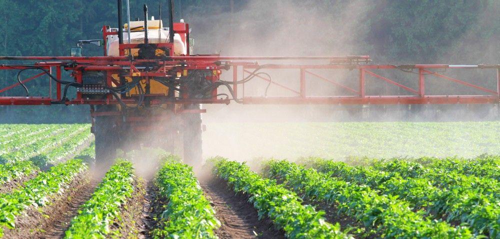 Szkodliwe ŚOR-y: bezpieczne stosowanie pestycydów?