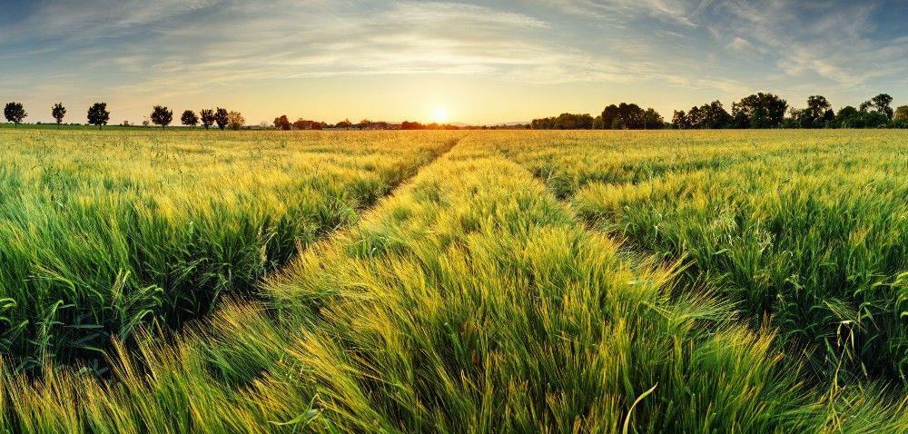 Kiedy nowa ustawa okształtowaniu ustroju rolnego?