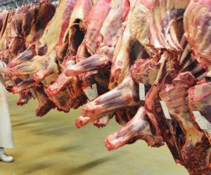 Od czego zależy jakość wołowiny kulinarnej?