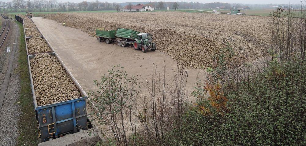 Zbiory zprodukcji rolnej iogrodniczej w2015 r.
