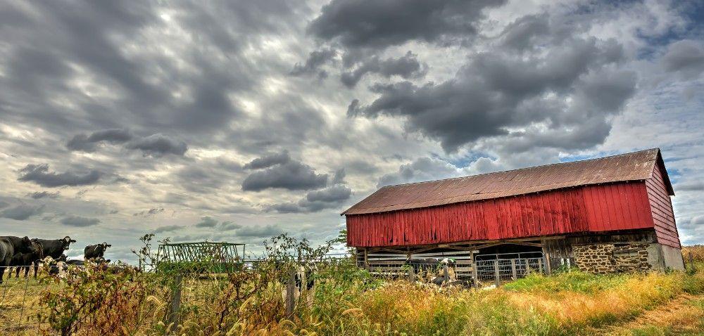 Ustawa okształtowaniu ustroju rolnego: co dalej?