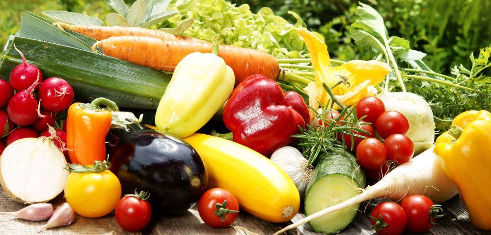 Czym jest Integrowana Produkcja Roślin?