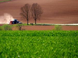 uodpornienie na herbicydy