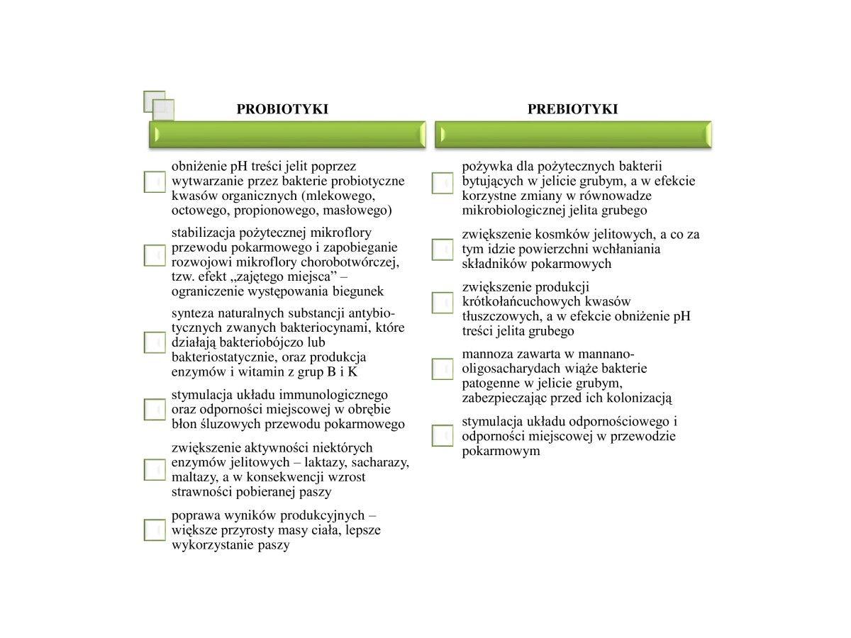 probiotyki, prebiotyki, synbiotyki
