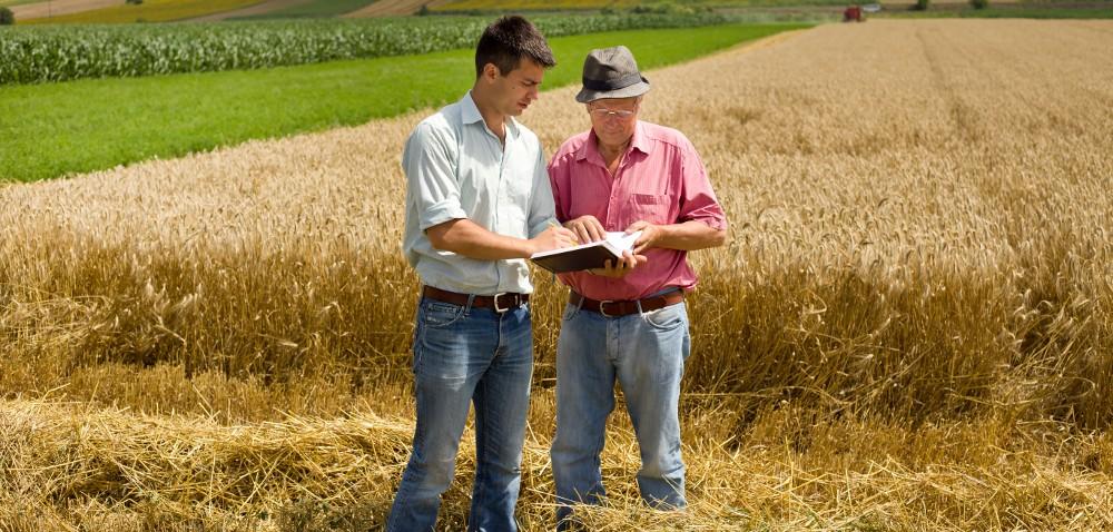 Spis rolny 2020 – będzie czy nie? [AKTUALNOŚCI]