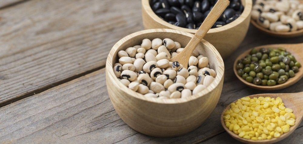 PROTEIN2FOOD: jak dobrze wykorzystać białka roślinne?