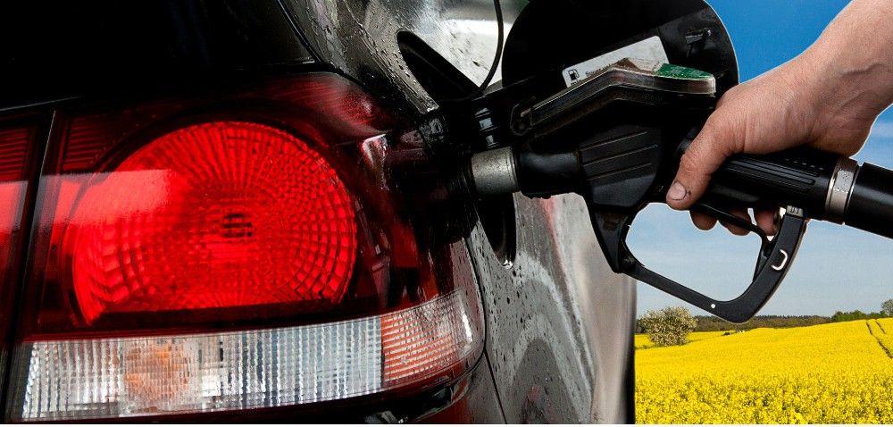 Polagra: forum poświęcone biopaliwom