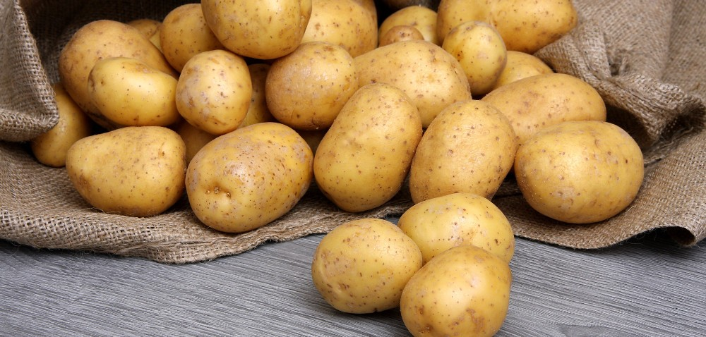 MRiRW: czy łatwiej będzie eksportować ziemniaki do UE?