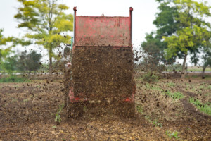 premie dla młodych rolników
