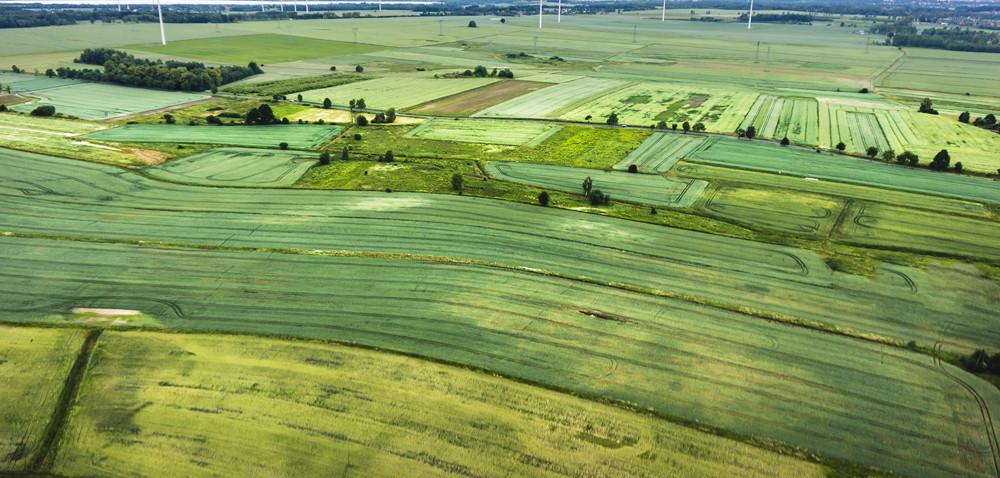 Przyszłość polskiego rolnictwa tkwi współdzielczości [AKTUALNOŚCI]