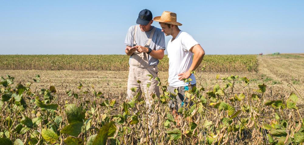 PROW: premie dla młodych rolników