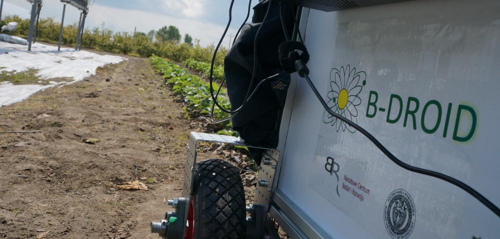 Czy B-droid zastąpi pszczoły wzapylaniu roślin?