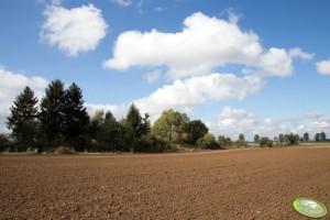 zakup ziemi wpolsce