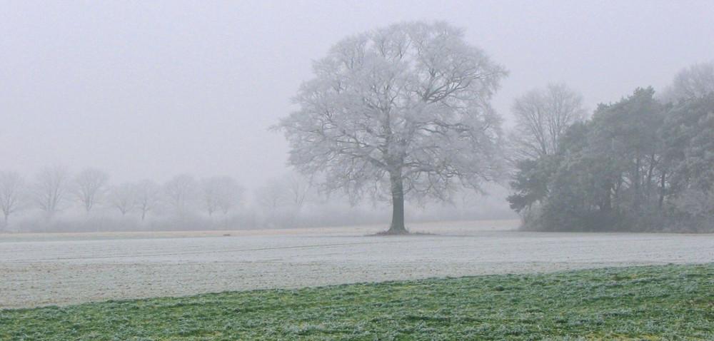 Alert pogodowy: będą intensywne opady śniegu