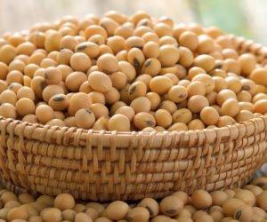 Produkcja soi na świecie wgórę