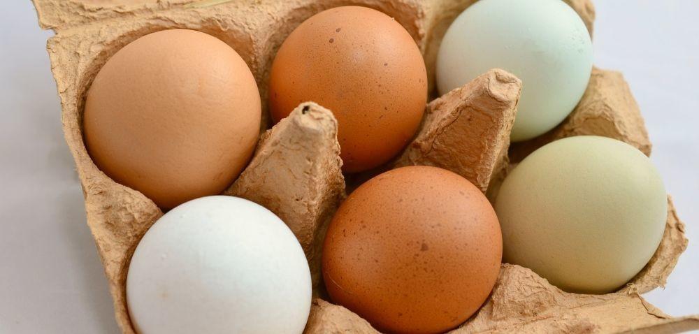 Jedzmy jaja – nowa kampania promocyjna