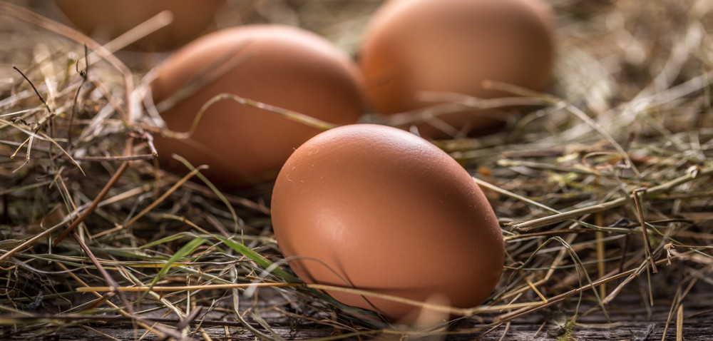 9 zdrowych powodów, dla których warto jeść jajka