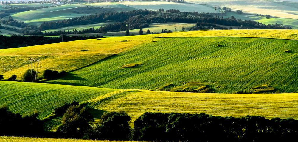 ANR: drogie dzierżawy w2015 r.