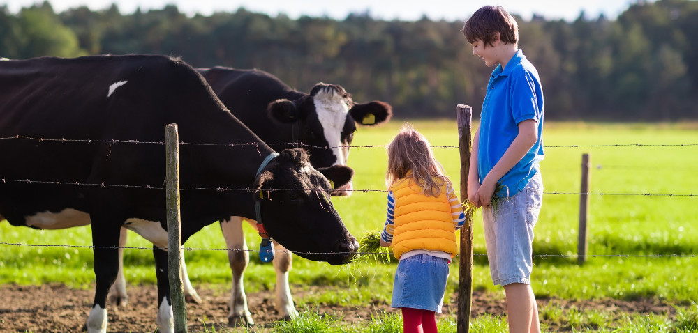 Młodzi rolnicy wiedzą, czym jest BHP