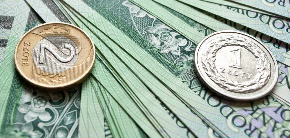 Pora zabezpieczyć pieniądze na barszcz Sosnowskiego