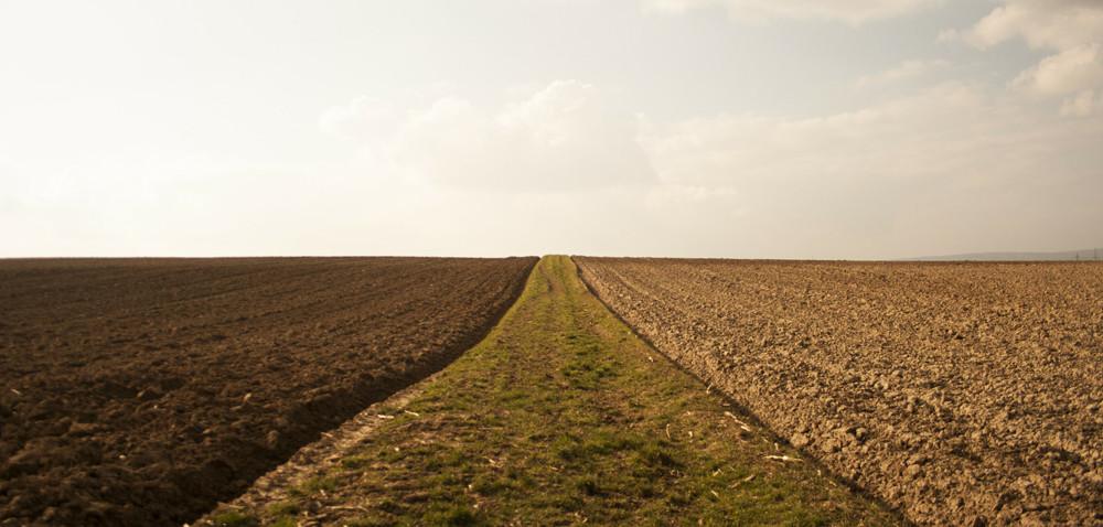 Czy warto badać glebę wgospodarstwie?