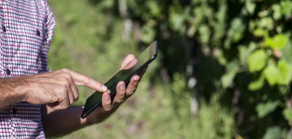 Sumi Agro Poland: aplikacja znajdzie właściwy produkt