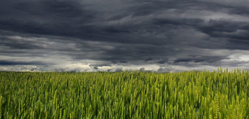 Zmiana pogody: czy czekają nas burze?