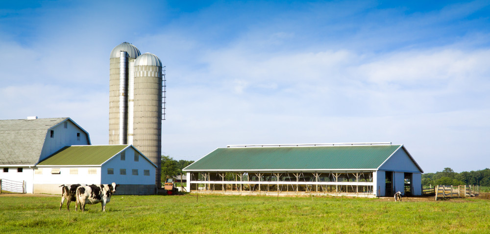 Modernizacja gospodarstw rolnych: ostatni dzień naboru!