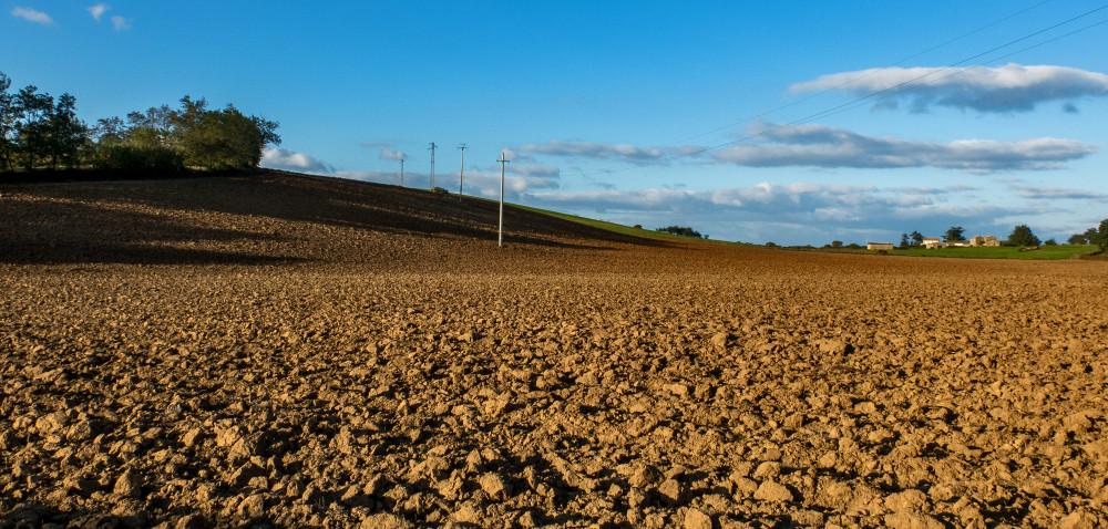 Kontrowersyjna ustawa owstrzymaniu sprzedaży ziemi