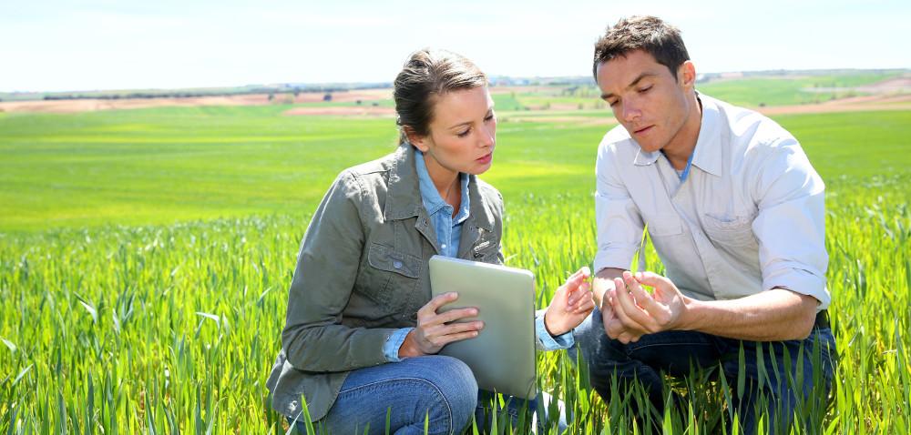 Czy rolnik może być organizatorem stażu?