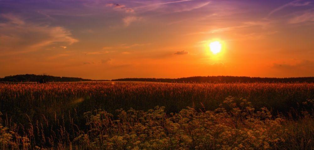 Rolniku, wjakiej strefie klimatycznej mieszkasz?