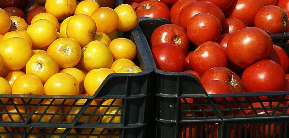 Urząd Bezpieczeństwa Żywności: kiedy projekt?